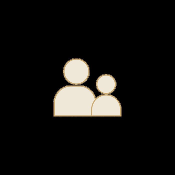 Proiecte familiale icon hover